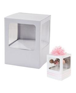 Cake Pop Verpackung - weiss (2Stk)