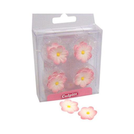 Zuckerdekor Blumen Daisy Pink