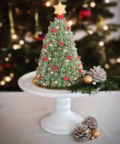 Weihnachtsbaum - Tortenkurs 14.12.2021